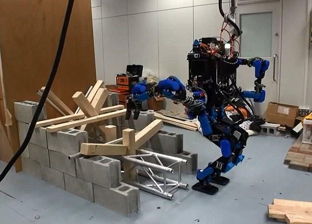 Google готовится к выводу на рынок нового робота (8 фото)