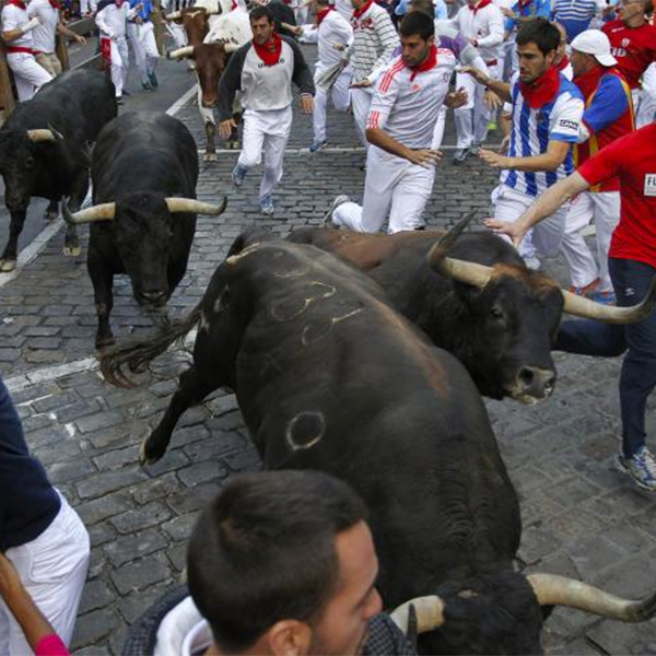 селфи, законодательство, бег быков, Организаторы фиесты оштрафовали тех, кто делал селфи во время бега быков
