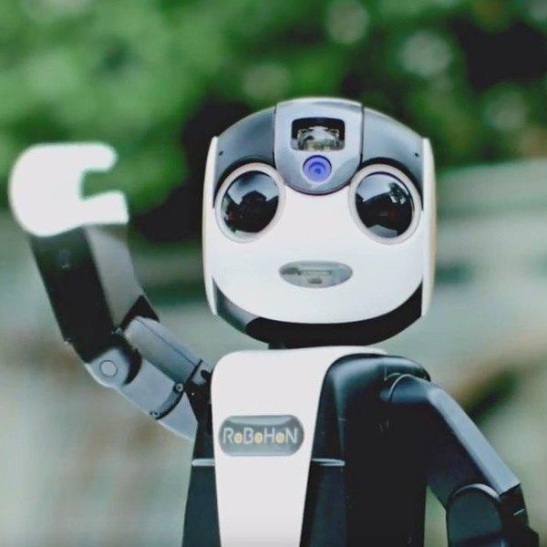 Sharp, смартфон, робот, наука, киборг, роботы, дрон, Sharp представил футуристичный робот-смартфон RoboHon