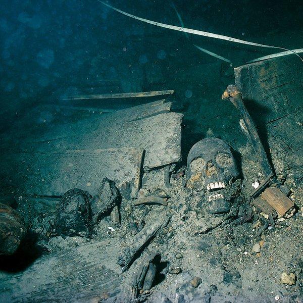 История,исследование,археология,политика,война,общество,море,океан, Морские археологи подняли 340-летний сыр с места гибели военного корабля «Крунан»