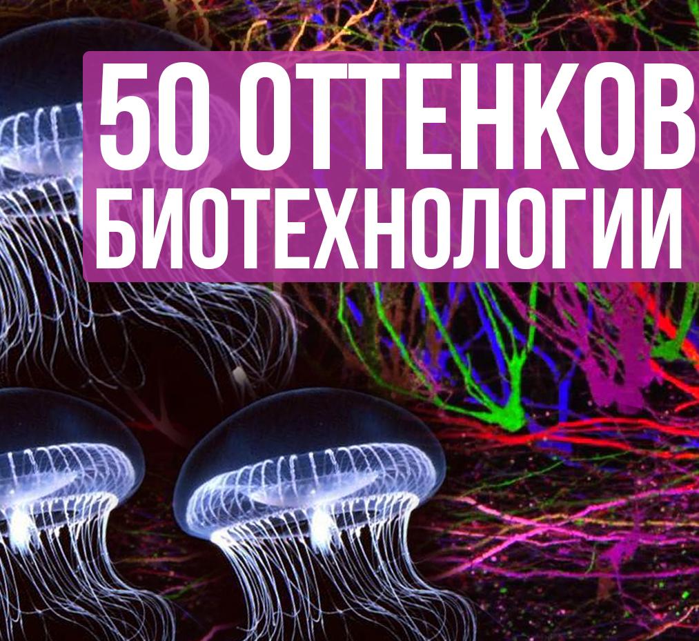 биология,технология,будущее, Биотехнологии в искусстве